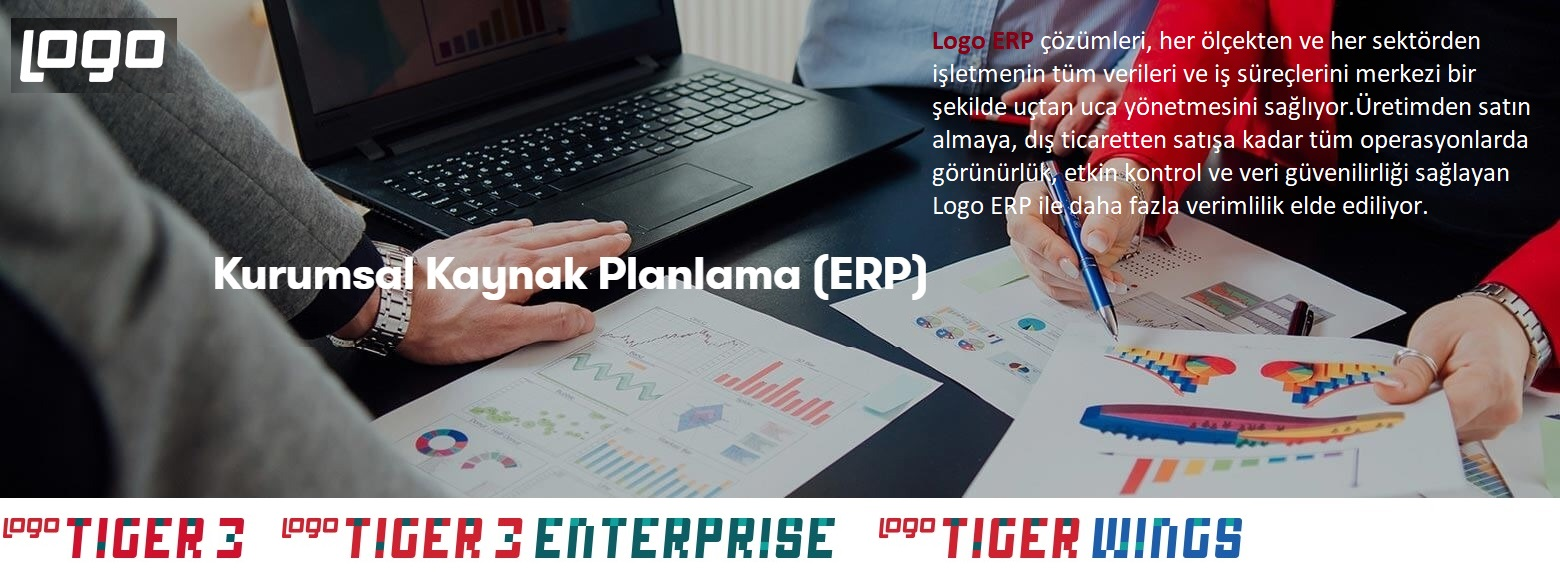 Logo Tiger3
